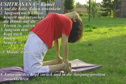 Yogaübung Ushtrasana