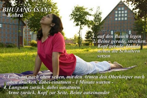 Yogaübung Bhjangasana