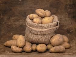 Kartoffeldiät