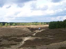 Fastenwandern Lüneburger Heide